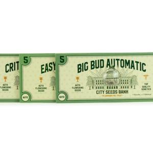 Semi Autofiorenti Indica Pack 1