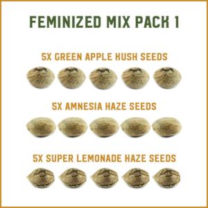 MIX Semi Femminizzati