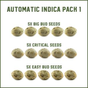 Semi Autofiorenti Indica Pack